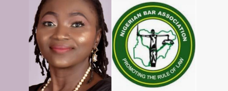 NBA ABUJA BRANCH (UNITY BAR): Notification Of 2021 Practicing Fees And Branch Dues For Members