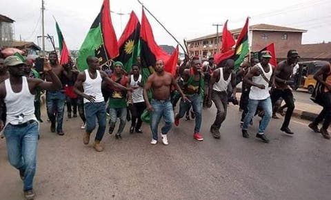 Biafra Sit-at-home: The Killers Of Dr Akunyili Are Sponsored By The Government- IPOB